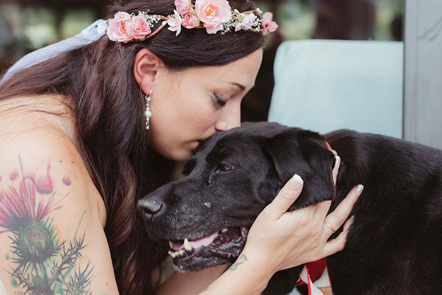 chien-de-15-ans-reste-en-vie-pour-voir-le-mariage-de-sa-proprietaire-4