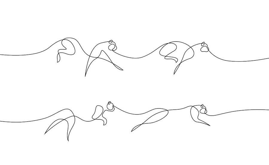 nouvelle s u00e9rie d u0026 39 animaux en une seule ligne par differantly