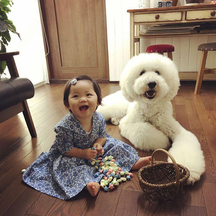 La niña y su caniche hacen todo juntos