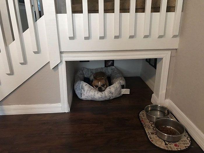 homme construit une vraie chambre sous les escaliers pour son chien