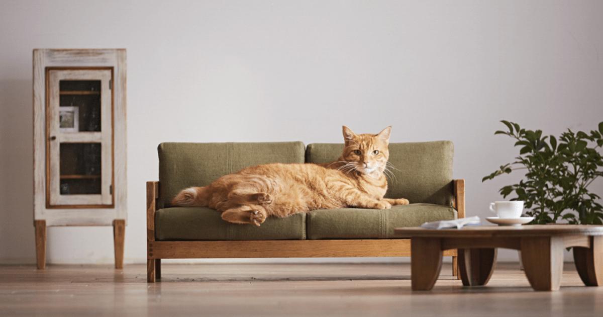Des meubles miniature pour chat pour plaire votre ma tre for Quincaillerie meuble japonais