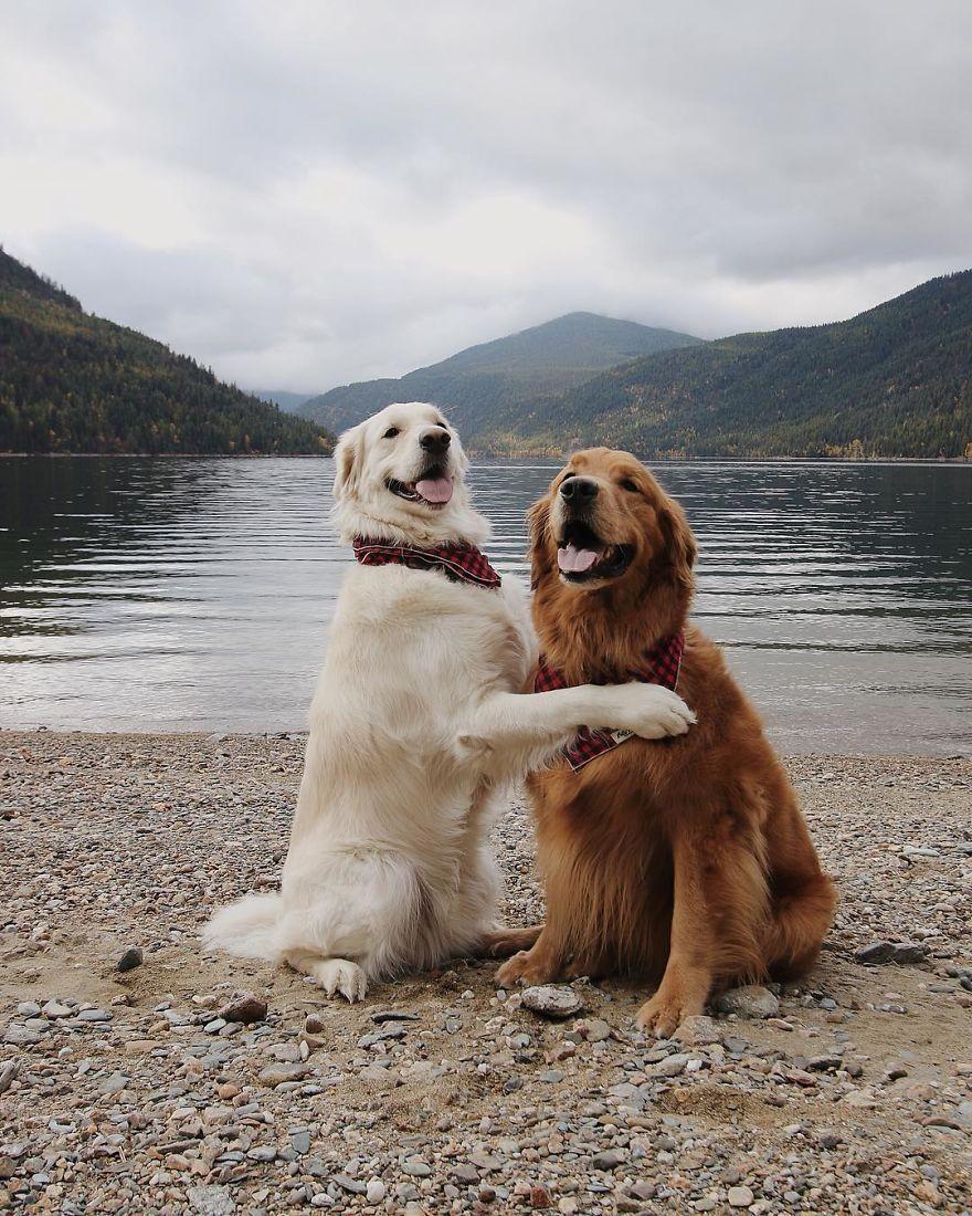 Rencontrer amis