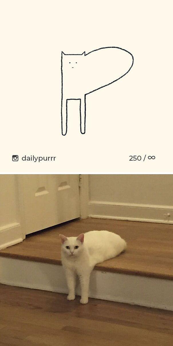 Ces dessins sans effort de chats vous feront rire une fois que vous verrez l'image d'inspiration.