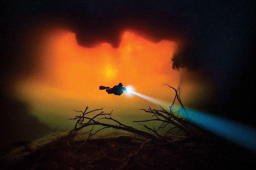 13 gagnants du concours de photos sous-marines qui vous couperont le souffle