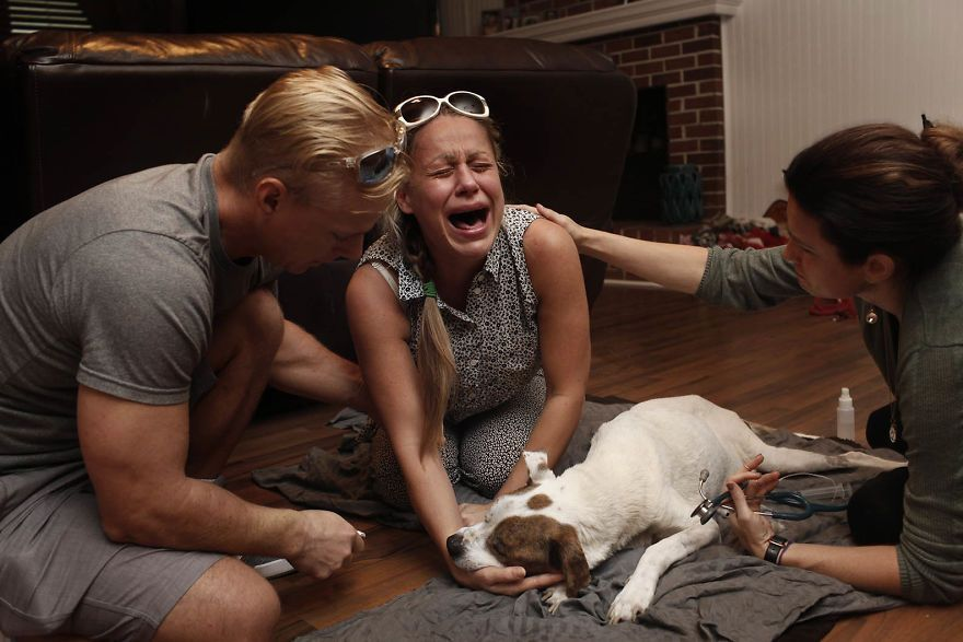 27 Heartbreaking Photos Showing People's Reactions To Their Pets Being Euthanized