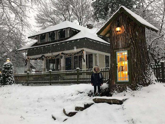 This Artist Turned A 110-Year-Old Dead Tree Into A Free Little Fairytale-Like Library