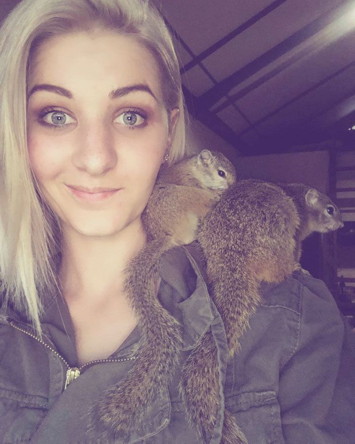 This Wild Squirrel Made A Nest For Her Baby In Her Rescuer's Drawer And It's Adorable