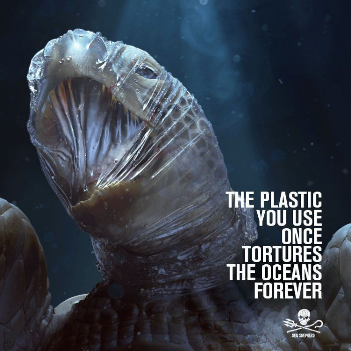 A Shocking Campaign Uses Graphic Images To Point Out The Damage That Plastic Pollution Has On The Ocean's Wildlife
