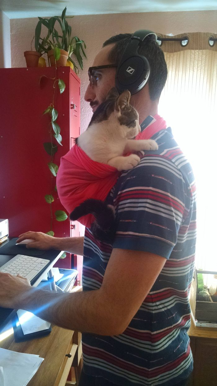 30 Of The Most Adorable Photos Of Cat Dads And Their Furry Friends