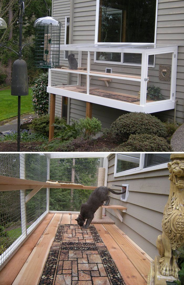 Cat Patios, Known As Catios, Are The Latest Way To Spoil Your Beloved Kitty (30 Pics)