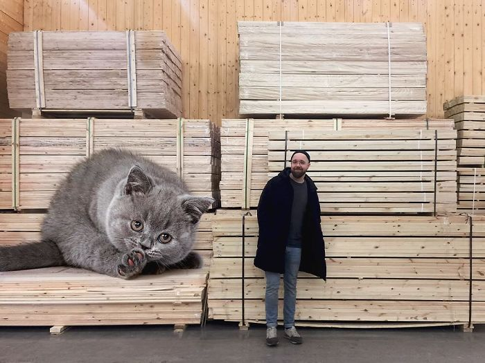 Guy Creates Images That Show How Earth Would Look If Cats Were A Lot Bigger (89 Pics)