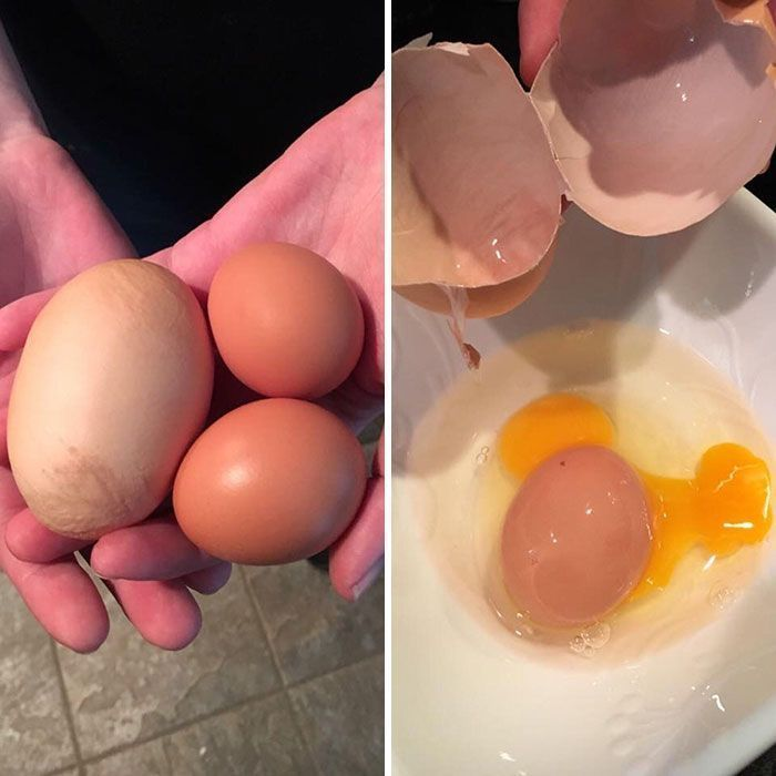 105 Times People Absolutely Won The Food Lottery (New Pics)