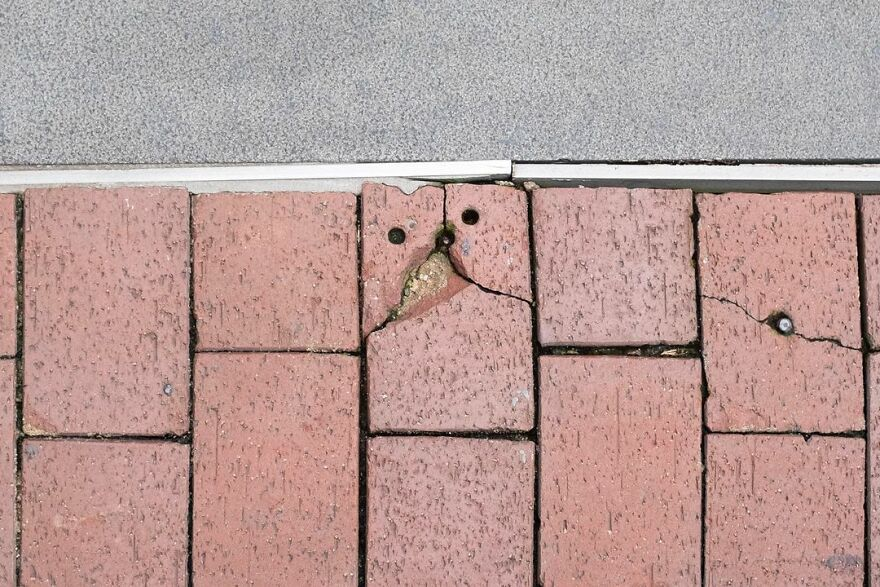 30 New Accidentally Brilliant Shots By Edas Wong
