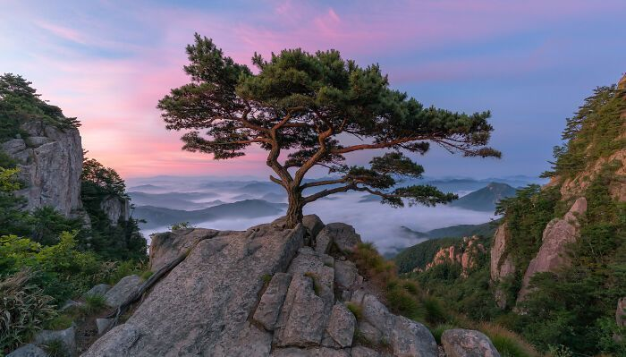 South Korea Is A Whole Different World, And These 50 Photos Are Here To Prove It