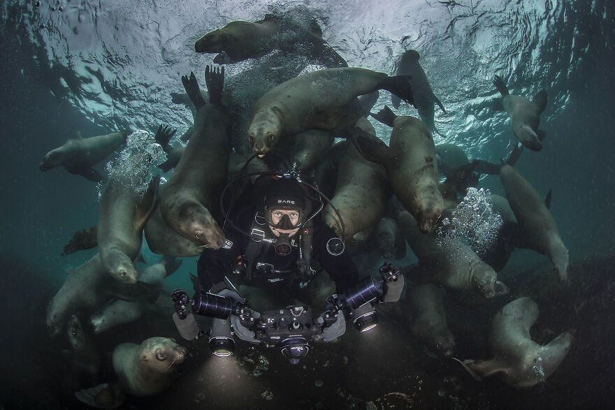 The Ocean Photography Awards 2021 Announced Their Finalists (30 Pics)