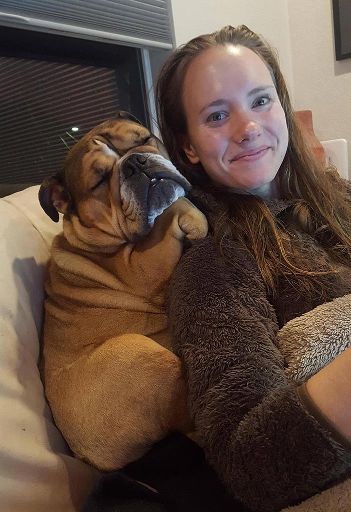 125 Of The Cutest Bulldog Pics People Have Posted Online And Made Our Day Better